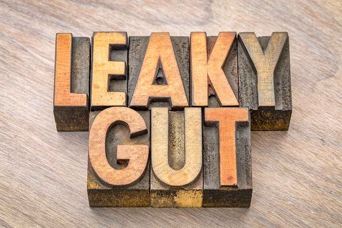 Leaky gut - the importance of the barrier wall