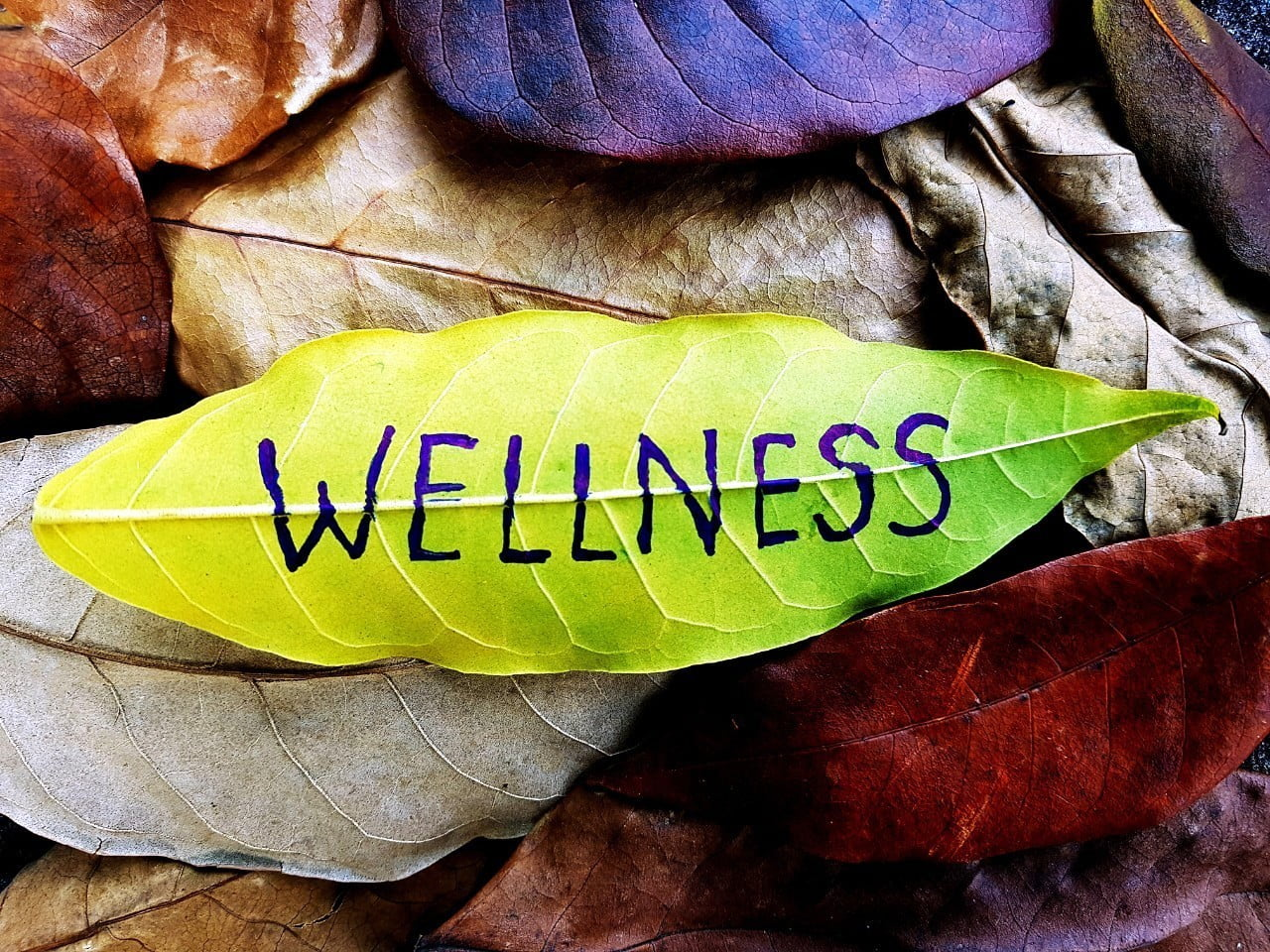 The power of prevention - invest in wellness