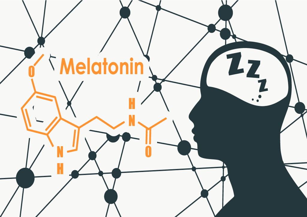 Melatonin and the brain diagram
