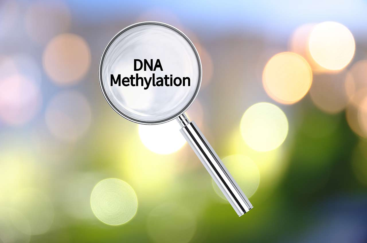 Is There a Link Between Autism and Methylation